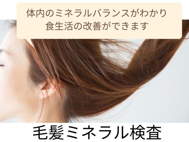20200703毛髪ミネラル検査のコピー