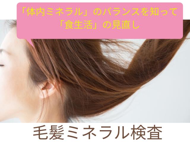 20200703毛髪ミネラル検査